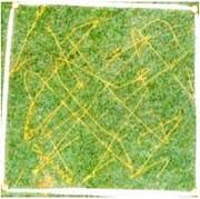 試験開始時/試験グリースA/30cm四方の芝生にグリースを筋状に5g散布