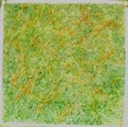 試験開始時/試験グリースB/30cm四方の芝生にグリースを筋状に5g散布