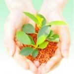 スワクリーン150 | 炭化水素系洗浄剤 | SPC Japan