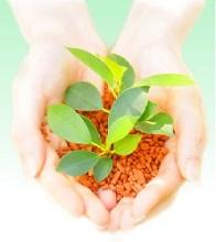 SP Clean 518   炭化水素系洗浄剤   SPC Japan